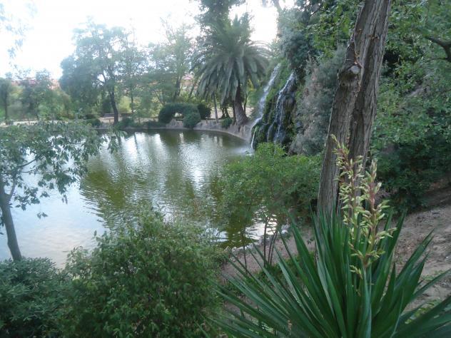 Laguna entre rboles sant feliu de llobregat - El tiempo sant feliu de llobregat ...