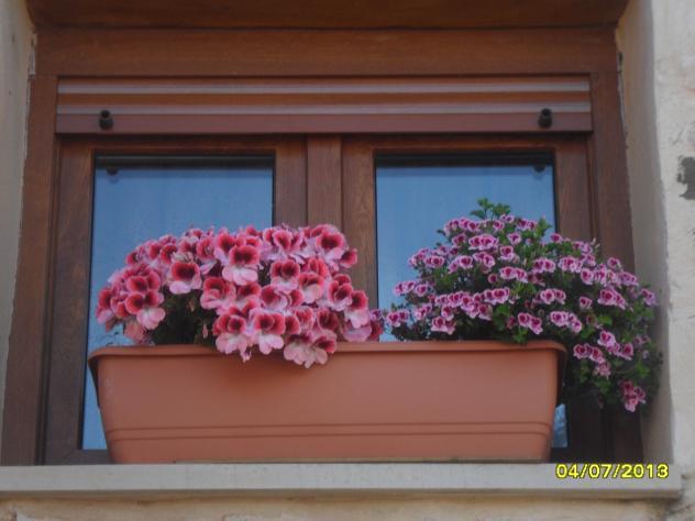 Jardinera con plantas cantoral - Jardineras con plantas ...