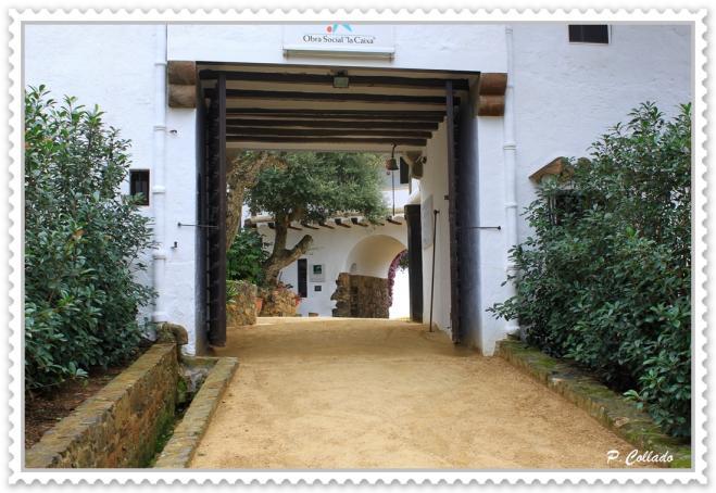 Entrada al jard n bot nico calella gerona for Jardin botanico costo entrada