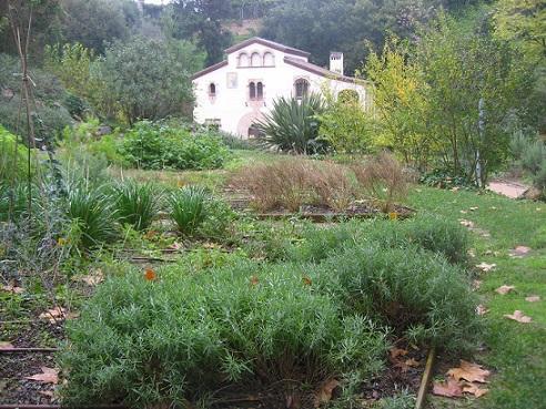 Antiguo jard n bot nico barcelona for Barcelona jardin botanico
