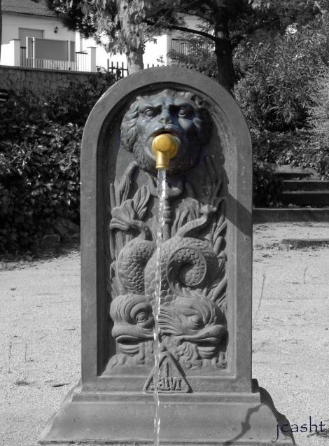 Sant Andreu de la Barca Spain  city pictures gallery : Fuente, SANT ANDREU DE LA BARCA