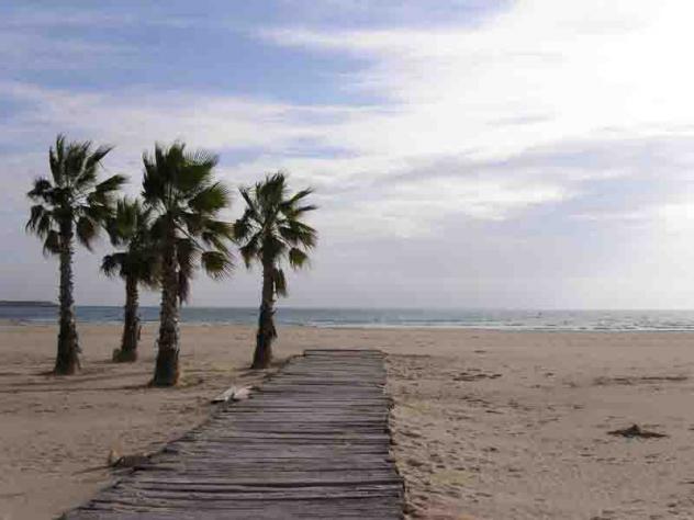Playa con palmeras vilanova i la geltru - Temperatura vilanova i la geltru ...