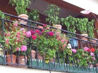 Balcones con encanto el cubo de la tierra del vino - Balcones pequenos con encanto ...