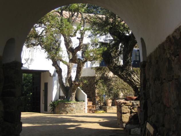 Entrada jard n bot nico calella gerona for Costo entrada jardin botanico