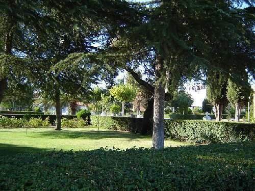 Jardines de la plaza 24 08 2006 gargaligas badajoz for Jardines de plaza