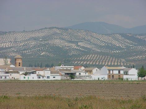 asqueroso rubia besando en Granada