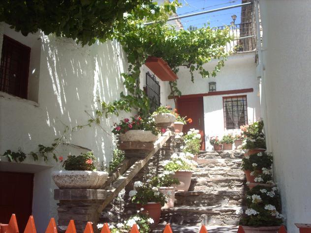 Patio andaluz senes almer a - Fotos patio andaluz ...