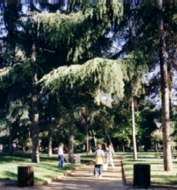 Parque nadal sant feliu de llobregat - Temperatura sant feliu de llobregat ...