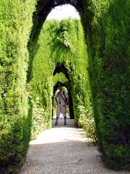 Jard n arcos getafe for Arcos para jardin