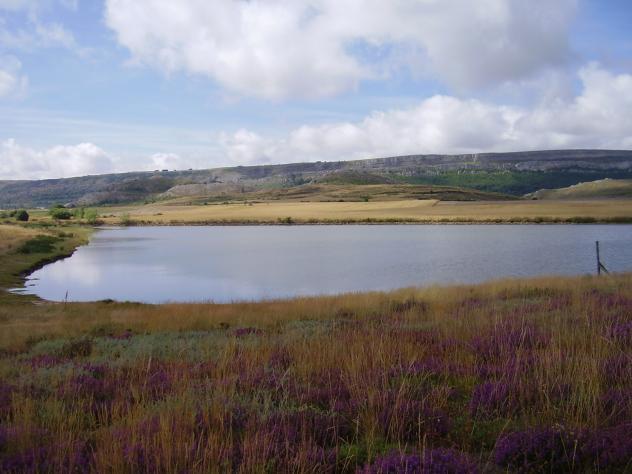 Laguna artificial llanillo for Construir laguna artificial